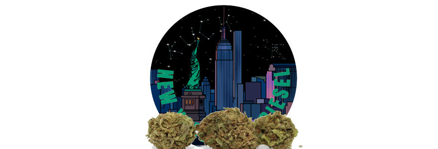 fleur de New York City Diesel CBD